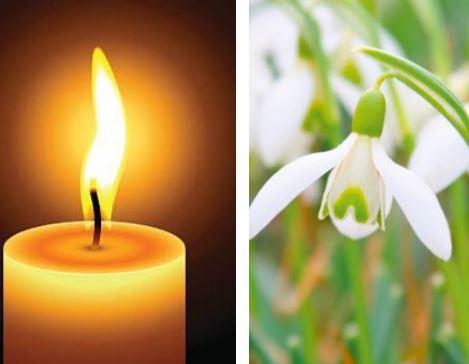 November Remembrance