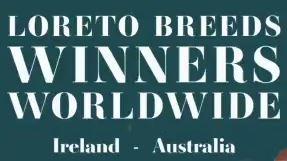 Loreto Breeds Winners